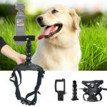 Pet Fetch Dog Pet Chest Back Mount Strap Shoot Picture for DJI OSMO Pocket 61Cbl9Oz6lL._SL1024_